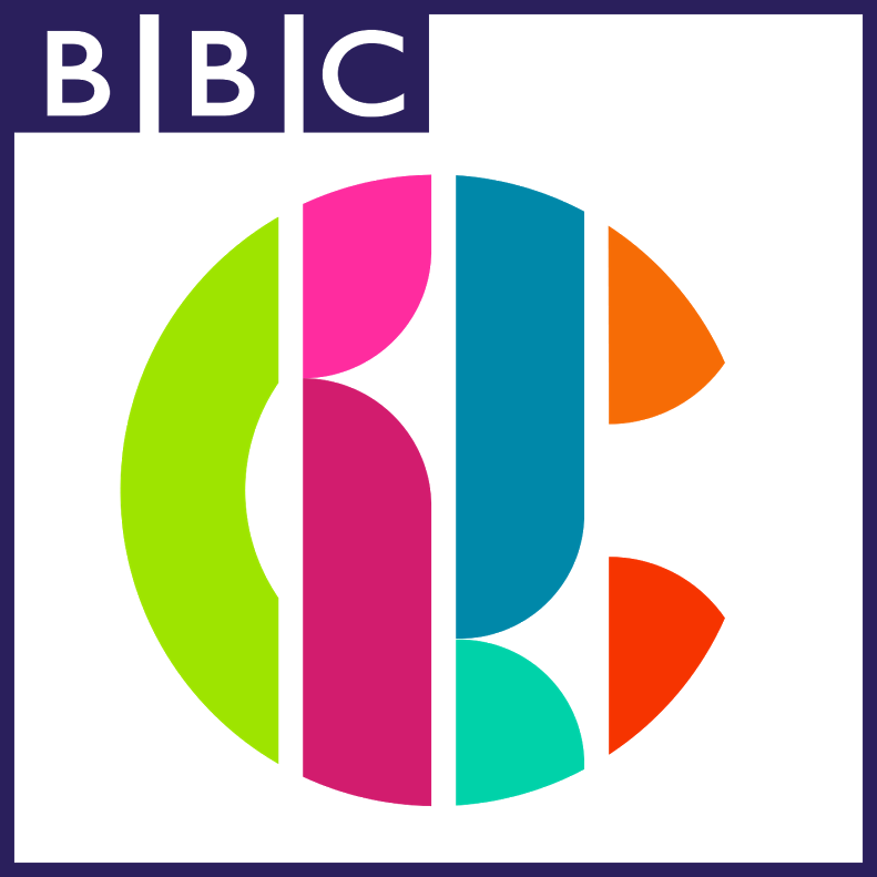 12-15 year old for Jamie Johnson Series 6 on Cbbc